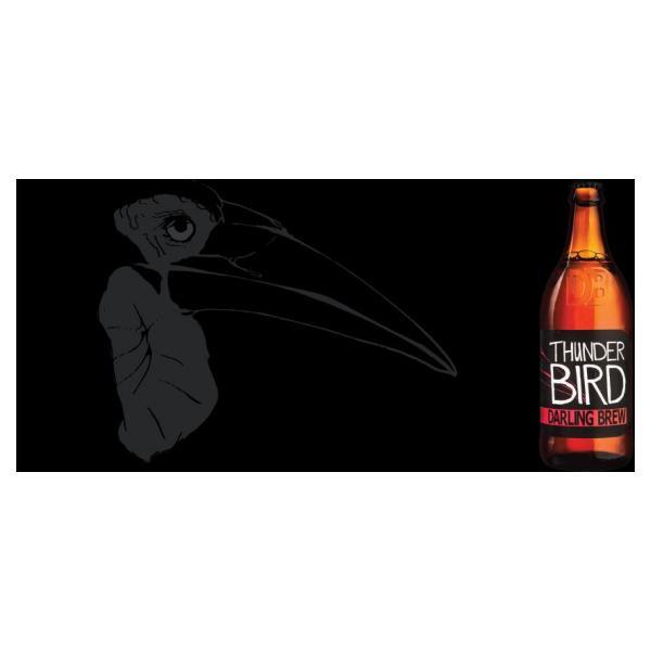 darling-thunder-bird